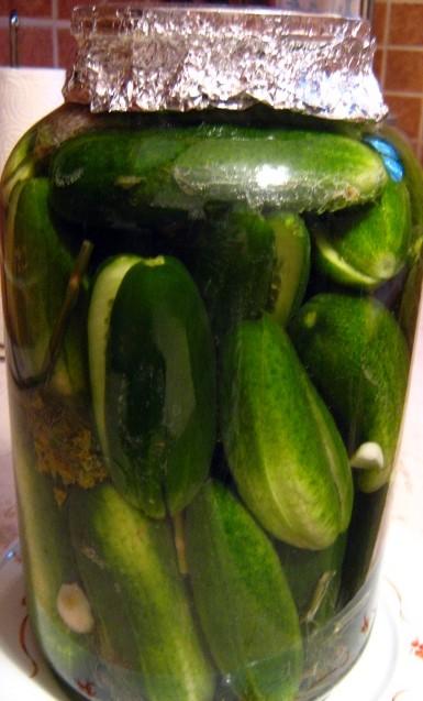 Leavened_cucumber_before