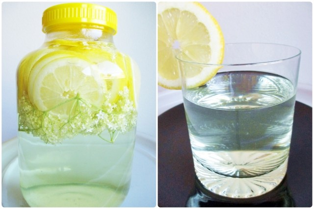 Elderflower soft drink